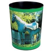 -1st- Prullenmand - paard vijver