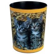 . Prullenmand - kittens