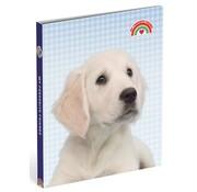 My Favourite friends Ringband 4r PP - hond blauw geblokt