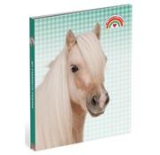 My Favourite friends Ringband 4r paard PP - groen geblokt