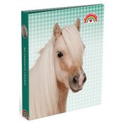 My Favourite friends Ringband 4r paard - geblokt groen