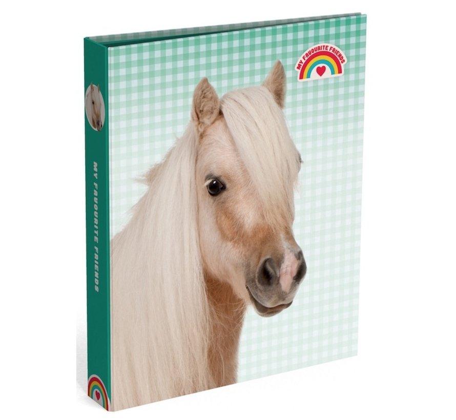 Ringband, 2 rings - paard geblokt groen