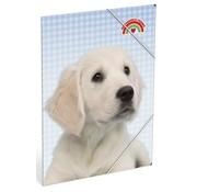 My Favourite friends Elastomap A4  hond - blauw