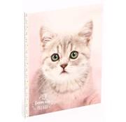 My Favourite friends A5 lijntjes schrift - kat