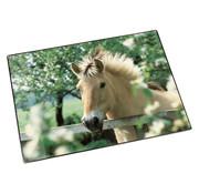 . Bureaulegger - paard achter hek