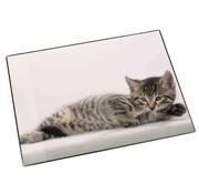 . Bureaulegger - kat liggend
