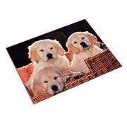 Bureaulegger - pups in mand