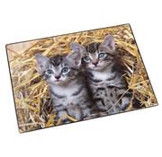 -1st- Bureaulegger - katten stro