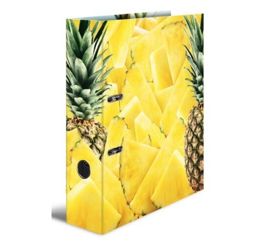 Ananas ordner met 2 ringen