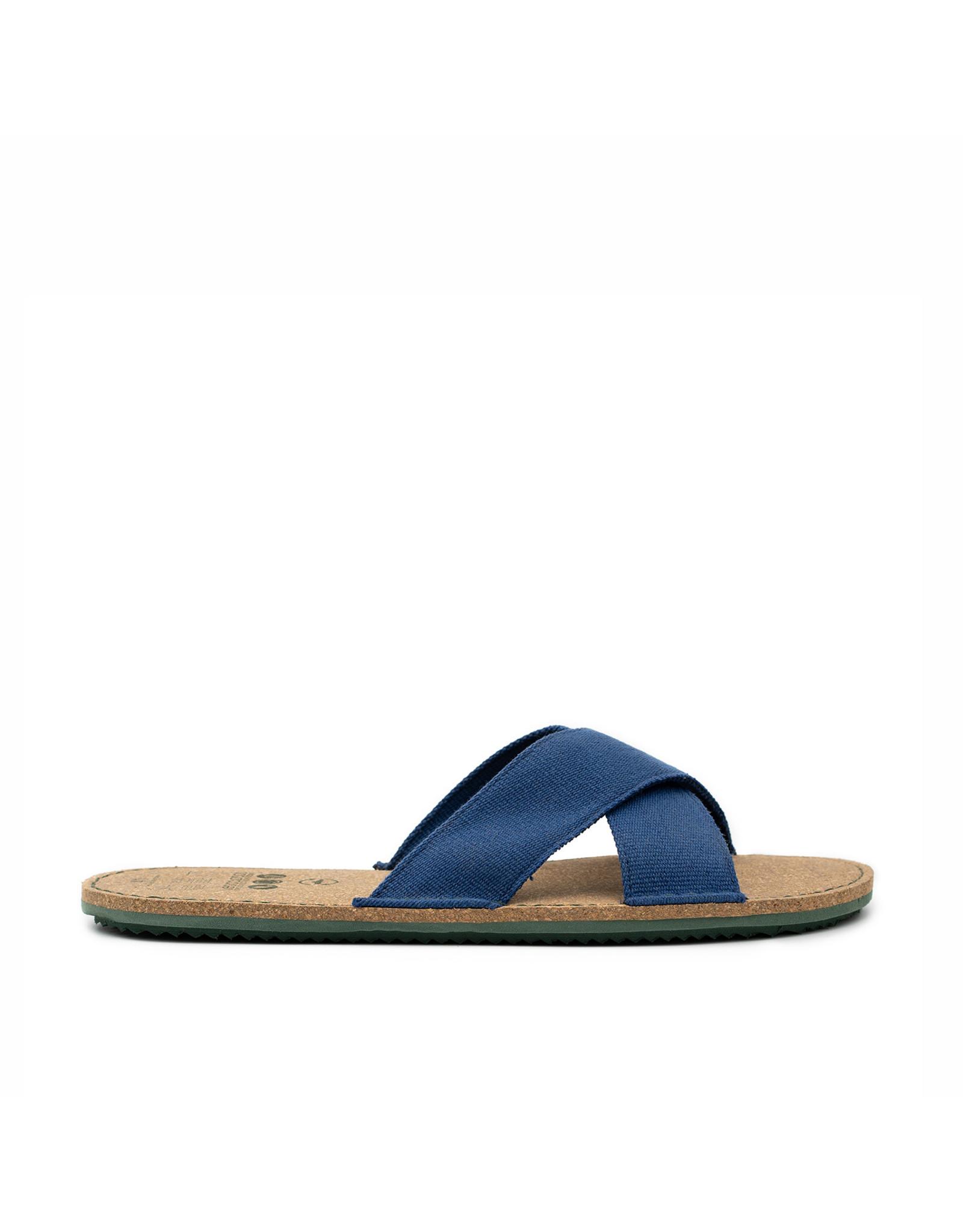 vesica piscis ALANIS crossed slides