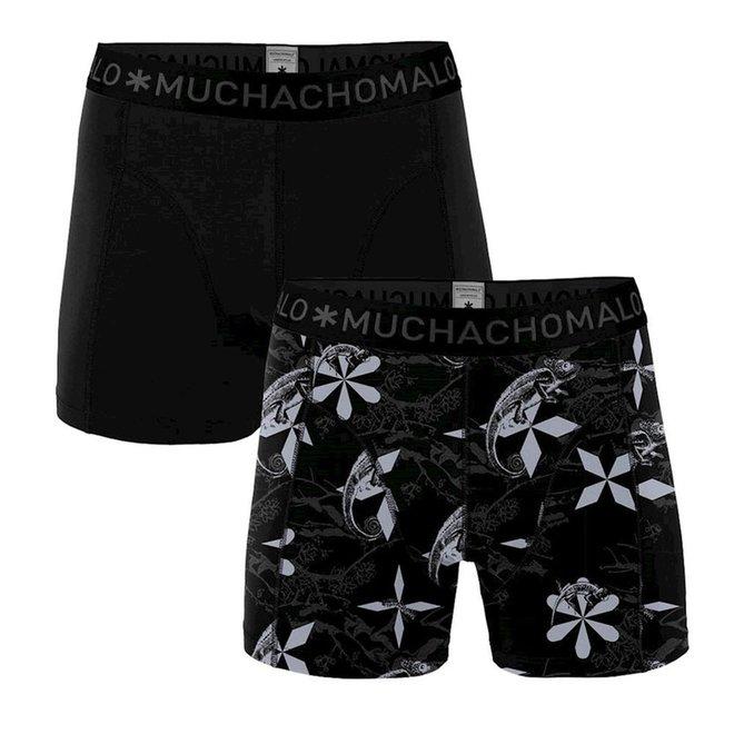 Men 2-pack shorts - rptl1010-01