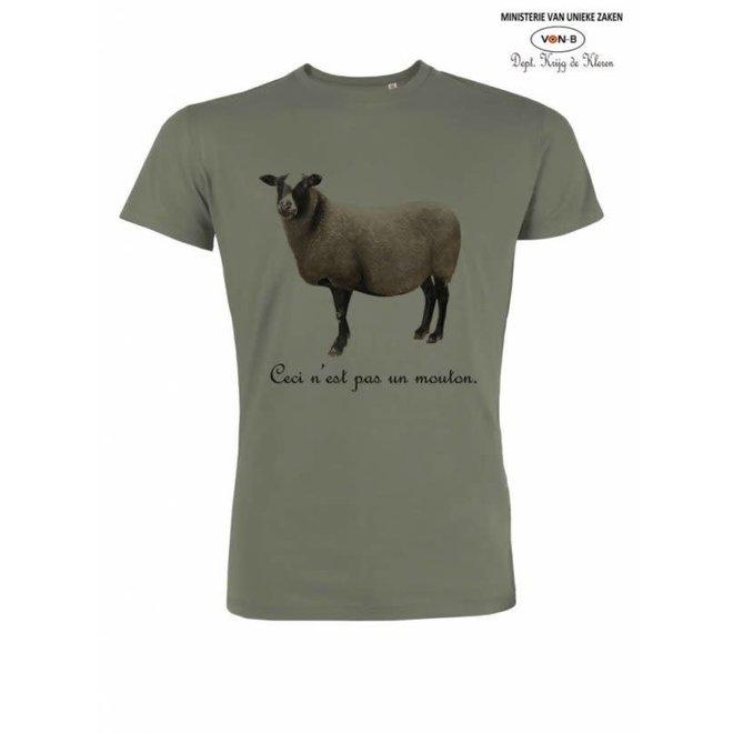 t-shirt man - Mouton