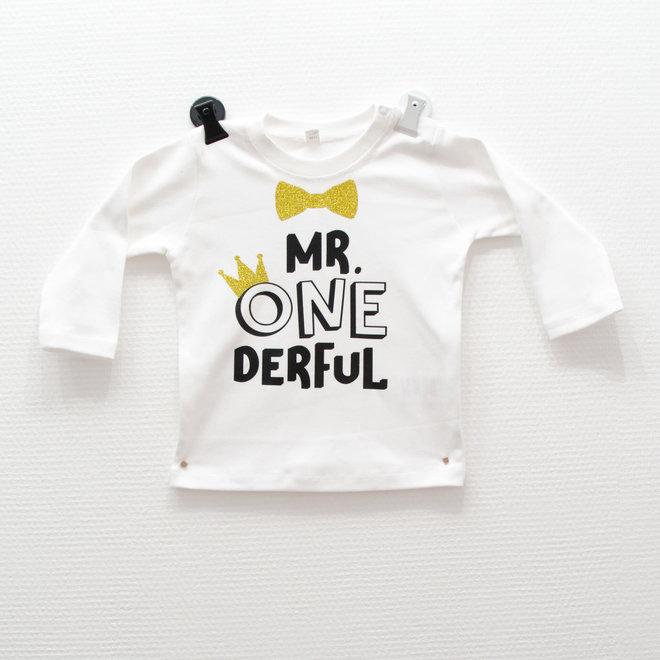 LS T-Shirt Mr. Onederful
