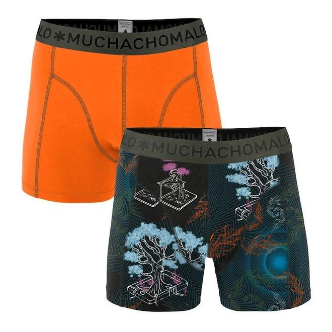men 2-pack shorts back to basic