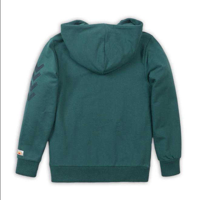 hoodie groen DJ Dutch