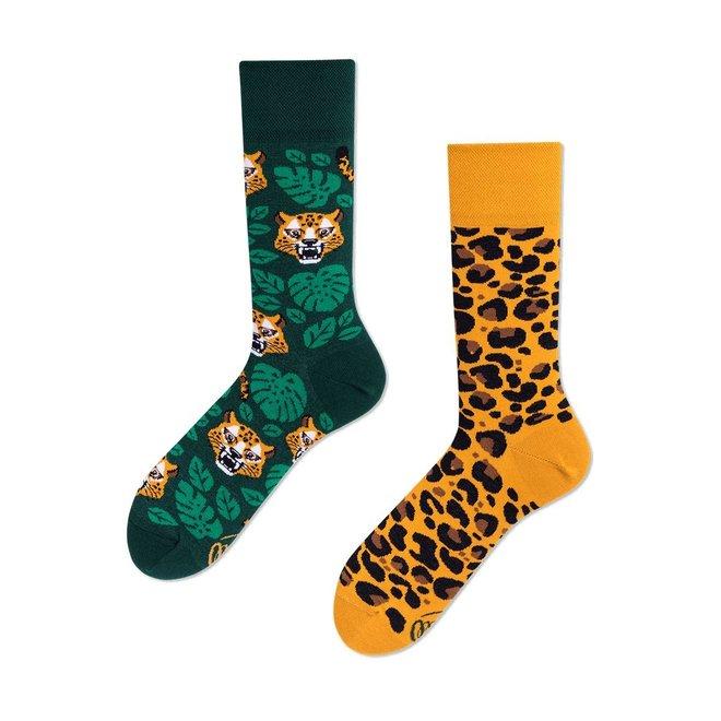 el leopardo kids