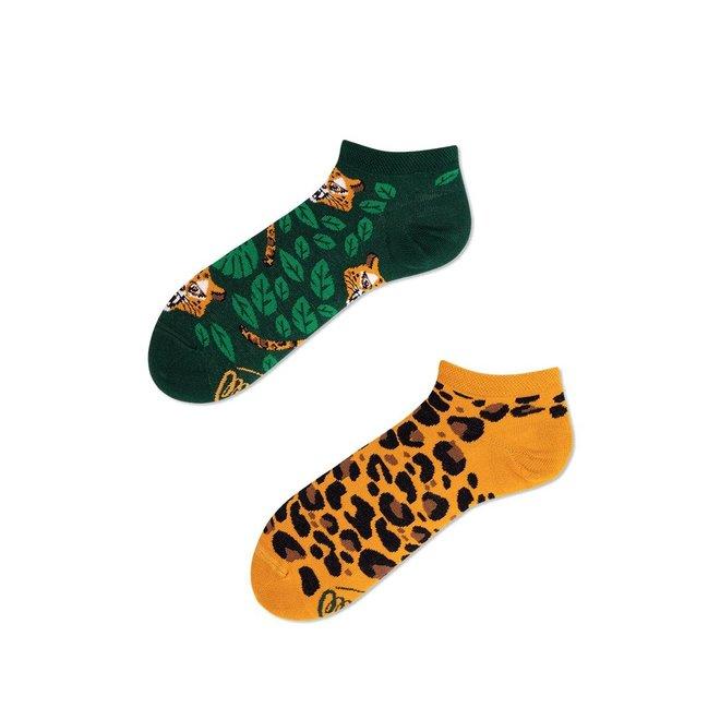 el leopardo low