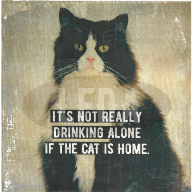 Fotokader XL Cat