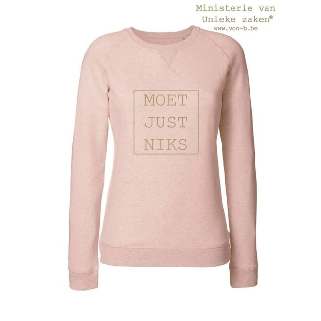 Moet Just Niks Sweater (V) - Rose
