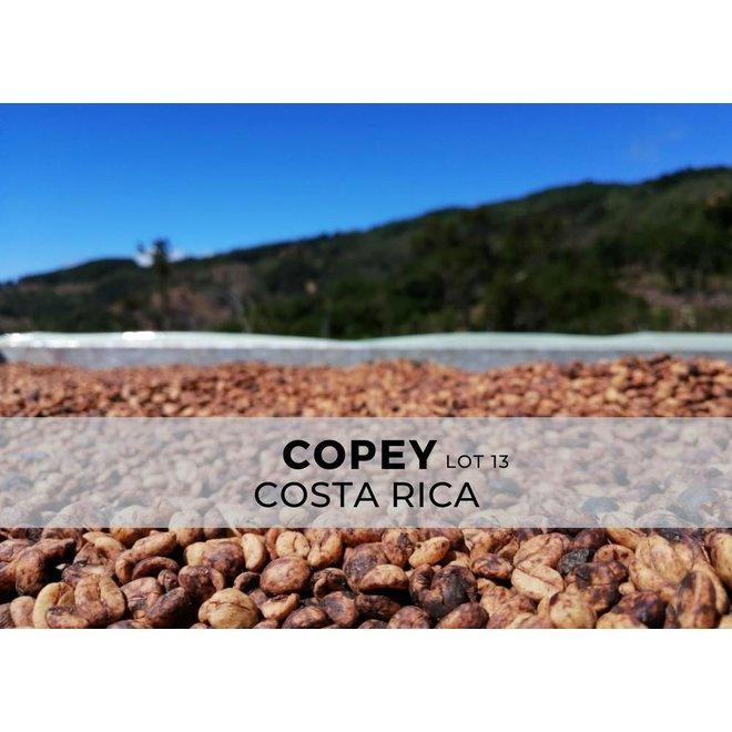 Costa Rica - Copey 230G - FILTER - GEMALEN