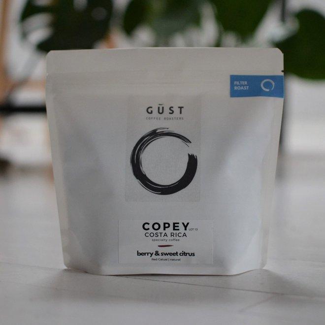 Costa Rica - Copey 230G - FILTER - BONEN