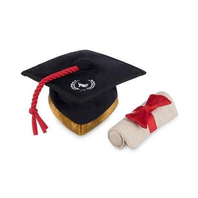 afstudeerhoed & diploma