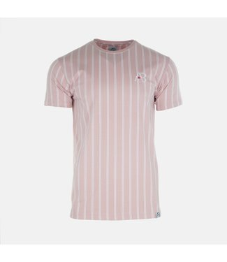 AB LIFESTYLE AB STIRPED T-SHIRT - ZALM