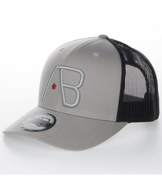 AB LIFESTYLE AB RETRO TRUCKER PET - SILVER