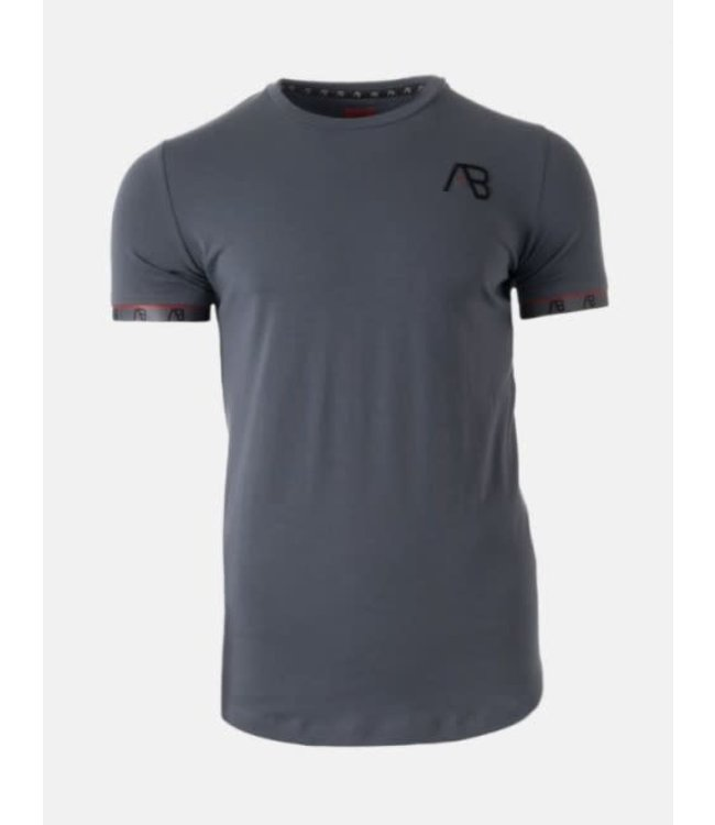 AB LIFESTYLE FLAG TEE - GREY