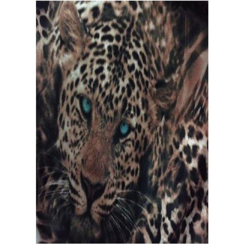 Gladiator Print Laces Leopard