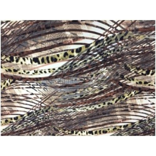 Coco Print Lace Brown Nature
