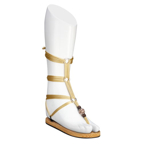 Gold Lace-up Sandals