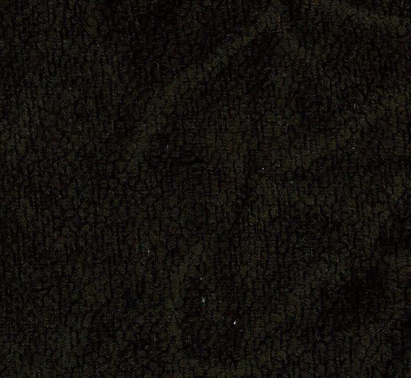 08 - bruin