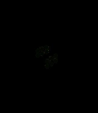 Klittenband, rondjes zwart haak en lus ø21 mm