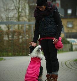 Doppel Hip Bag für Hundebesitzer - Pink