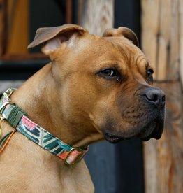 """Hundehalsband """"Rupert"""""""