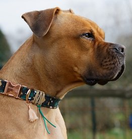 """Hundehalsband """"Rafi - Rose doré"""""""