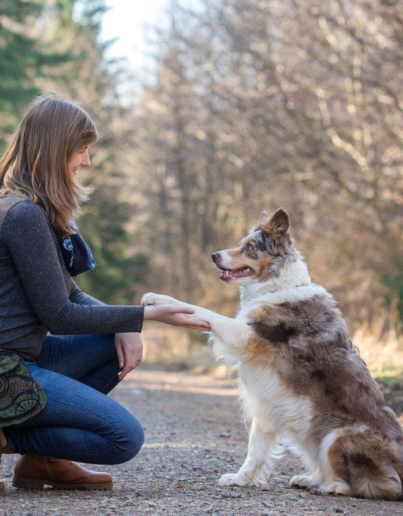 Doppel Hip Bag für Hundebesitzer - camo