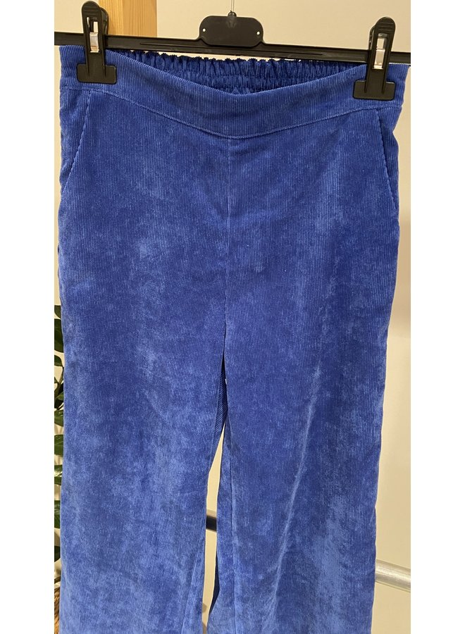 Charro Pant Royal Blue