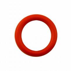 Farymann Diesel O-ring