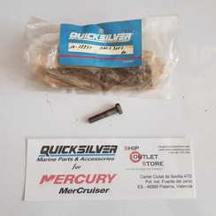 10-78841 Quicksilver Mercury Bout