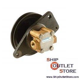 Bomba agua de motor Onan 132-0395 / 0430 Sherwood SHEG8002