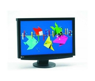 Eizo Eizo S2411W TFT LCD monitor DVI display 61 cm (24 inch) screen white