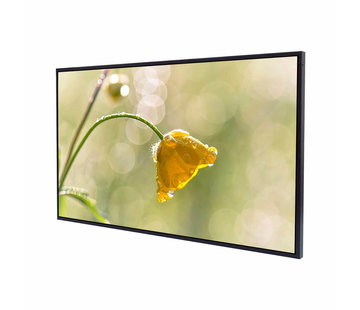 "Litemax SLO4235-L 42 ""LCD TFT Display LED Backlight Sunlight Readable Full HD"