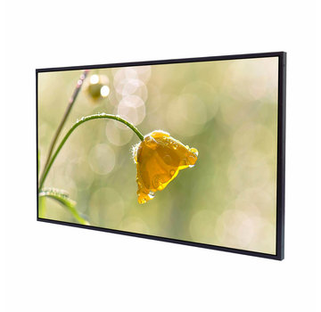 "Litemax SLO4235-L Pantalla LCD TFT de 42 ""Luz de fondo LED Legible con luz solar Full HD"