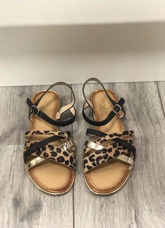 Lot sandaal