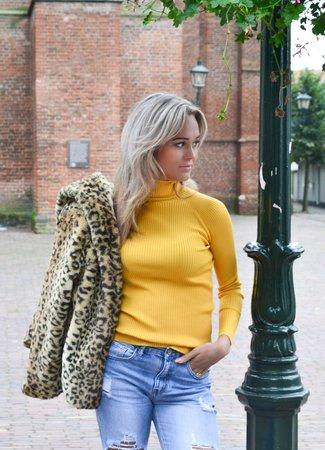 TESS V Jula col yellow