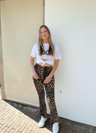 Ambika Dominique flared pants leo
