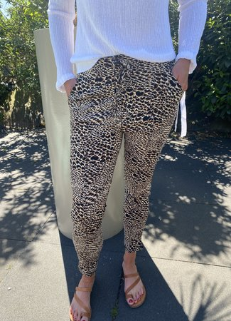 Robin travel broek brown