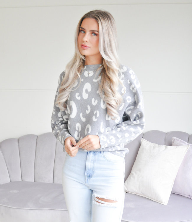 TESS V Sterre sweater grey